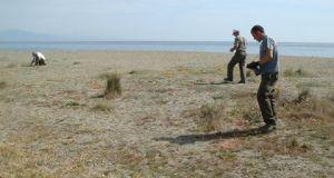 Manilva coastal nature reserve