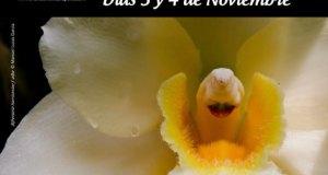 IV Estepona Orchid Fair