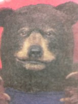 Ptor a big sexy bear
