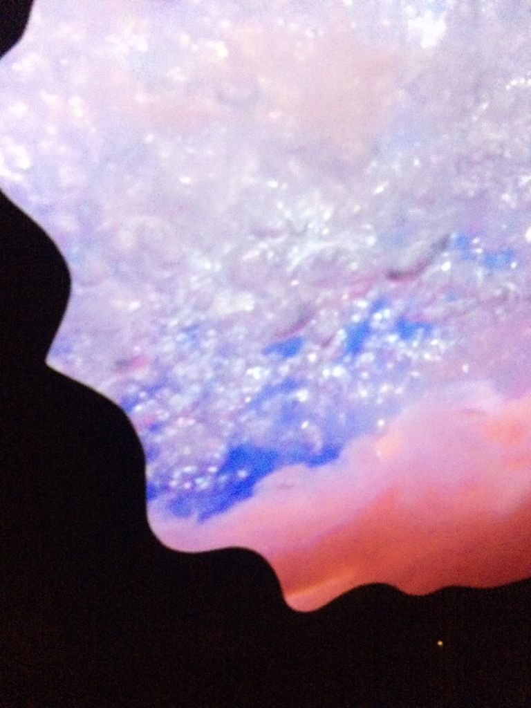Pipilotti-Rist-Floor-To-Mildness-2016-video