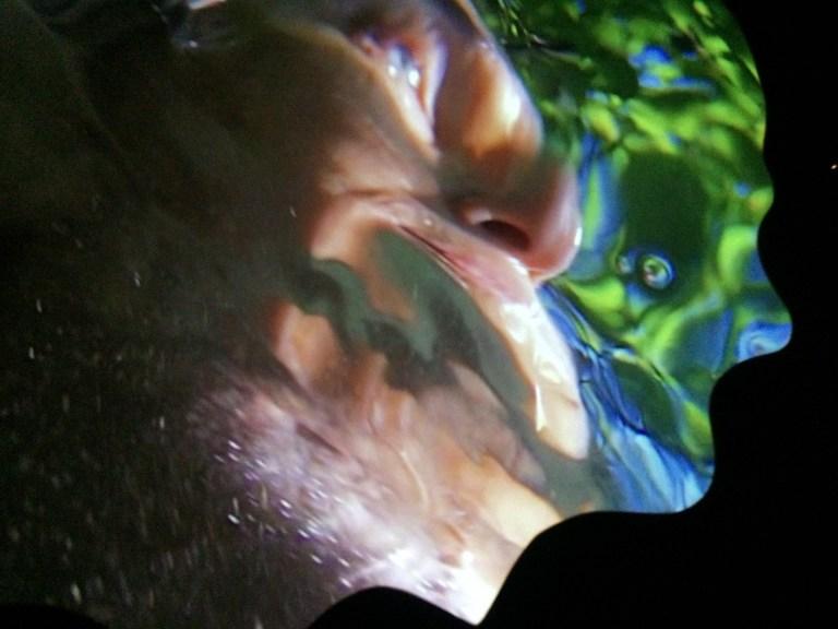Pipilotti-Rist-Floor-To-Mildness-2016-video