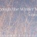 Through the Winter Woods Book Tag | Header Photo