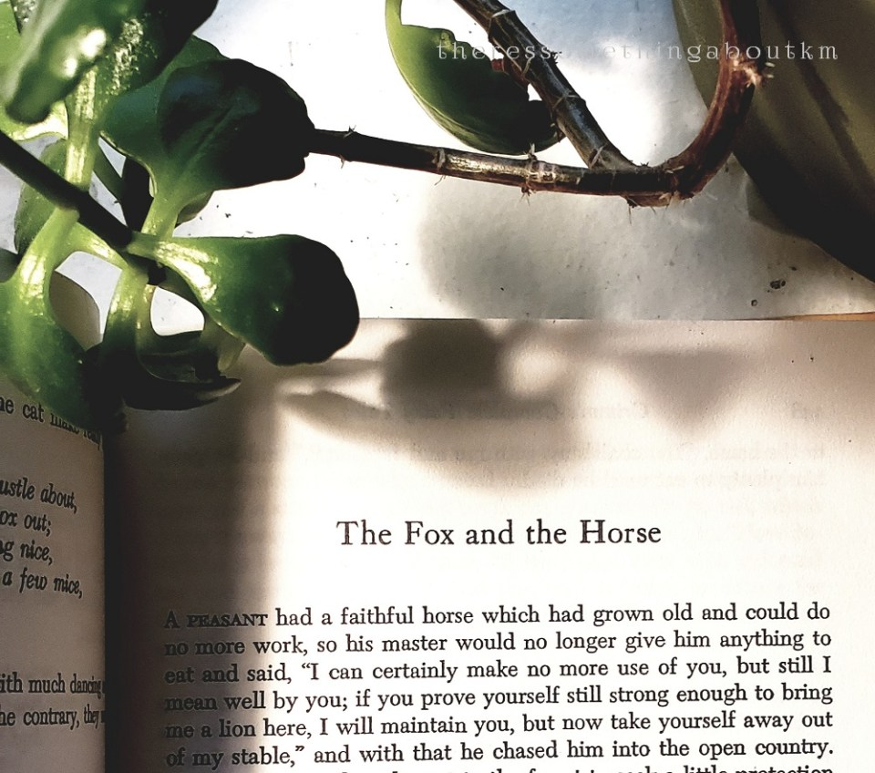 The Fox and the Horse | Grimm's Complete Fairy Tales