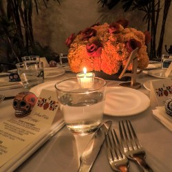 The-Restaurant-El-Patio-12