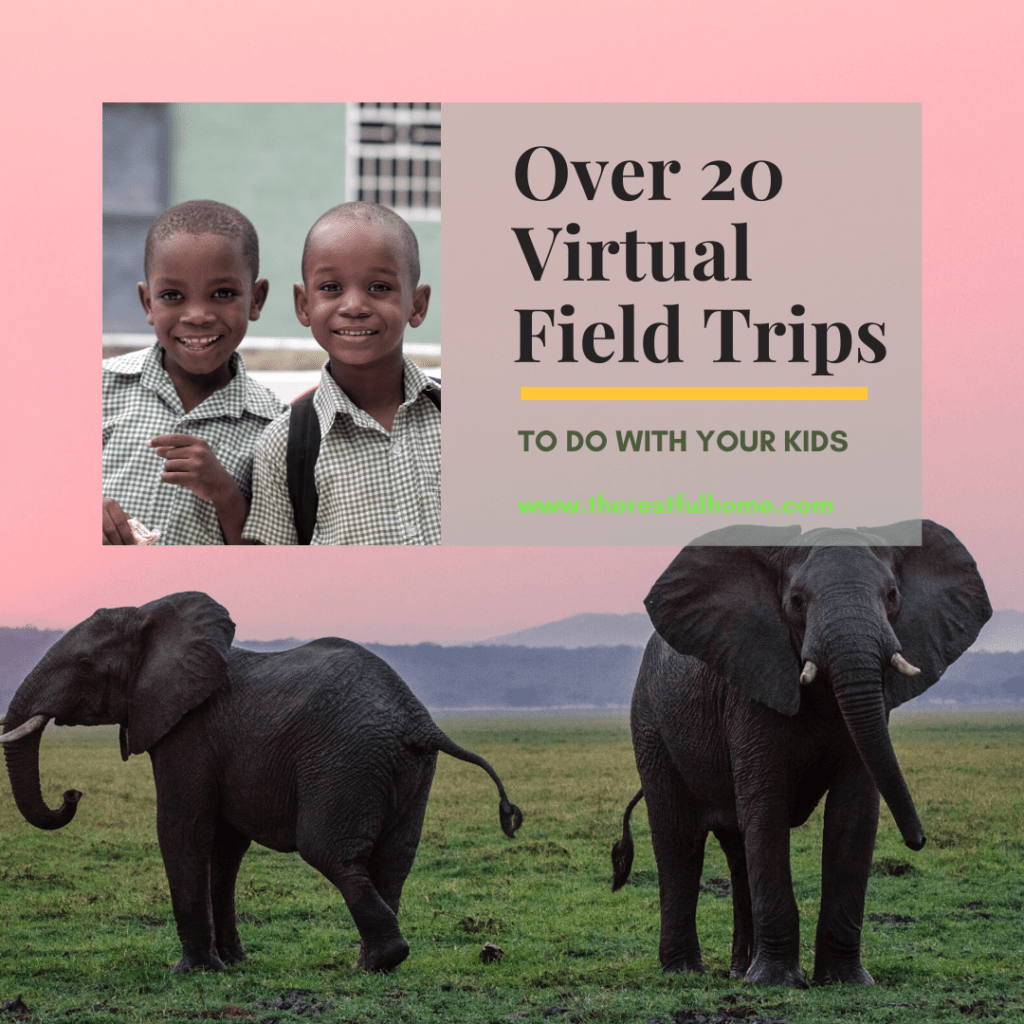 Over 20 Virtual Field Trips To Do With Your Kids
