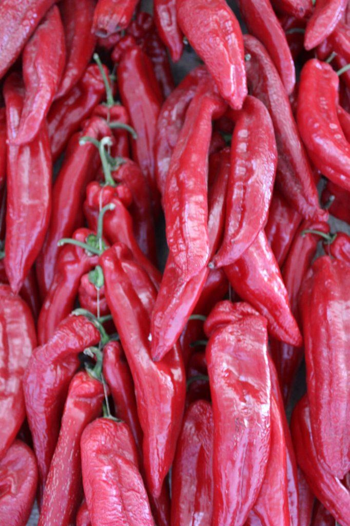 Peppers in Laguardia