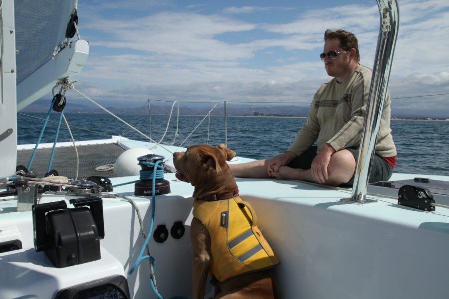 Man and dog at sea