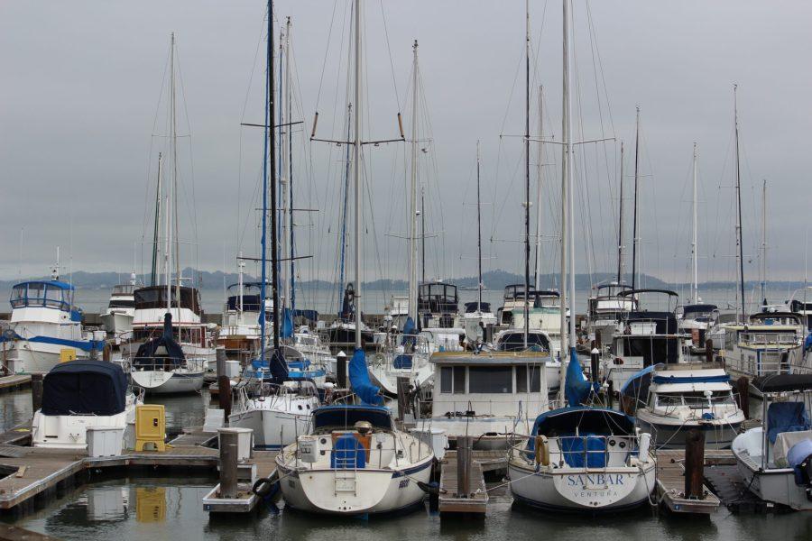 Exploring San Francisco's waterfront