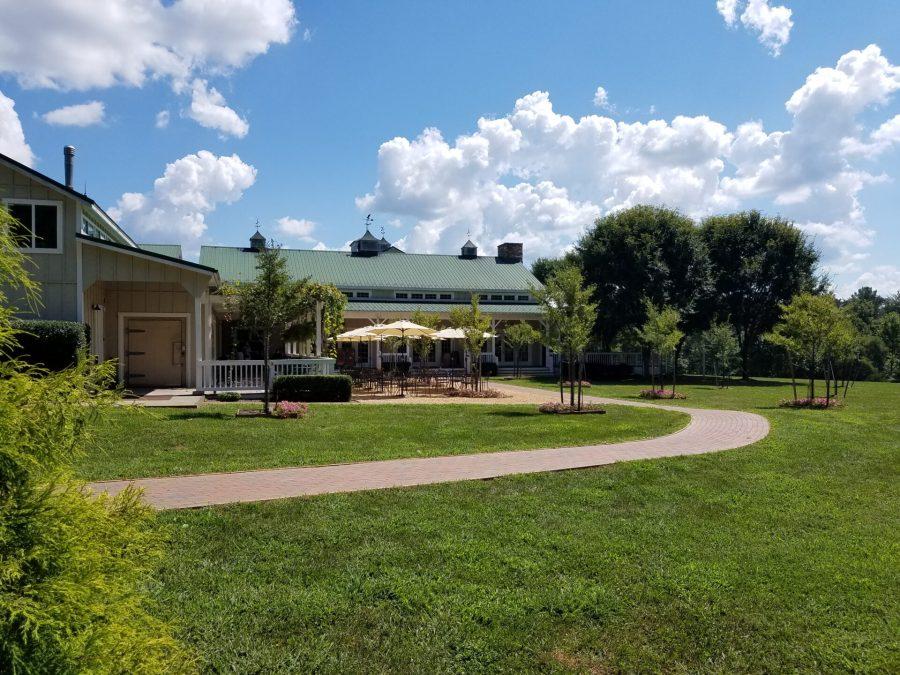Veritas Vineyards grounds