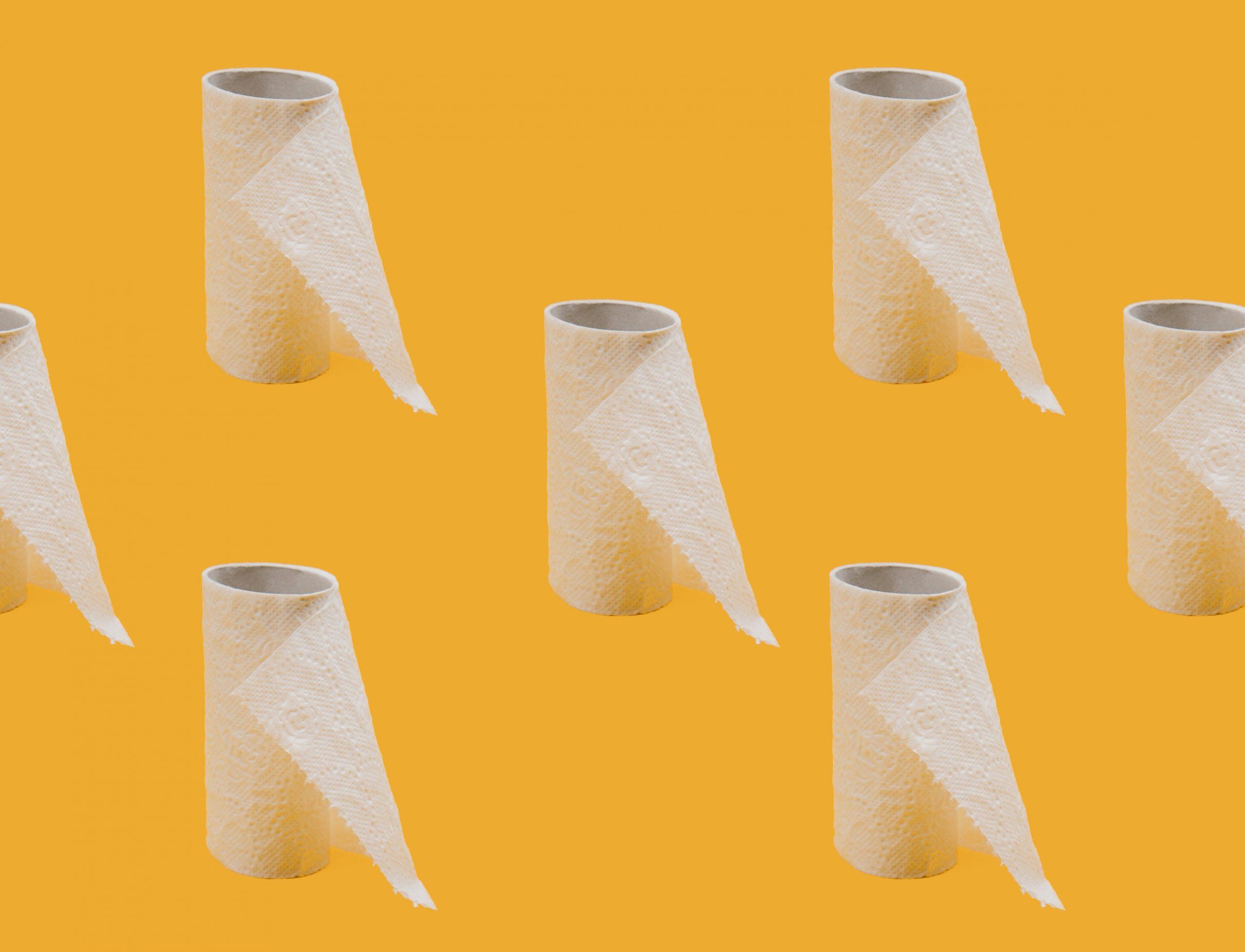 travel toilet paper- restroom essentials - restroom survival kit - restroom kit
