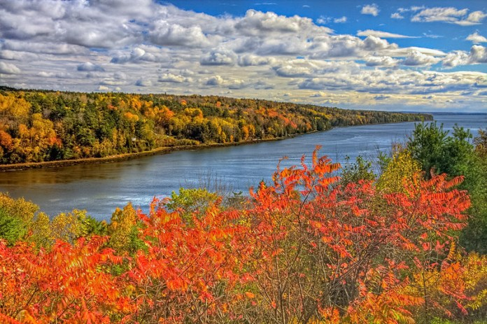 River with fall foliage