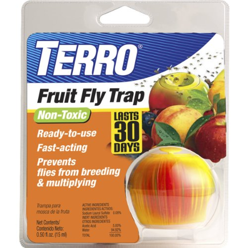 Terro fly trap