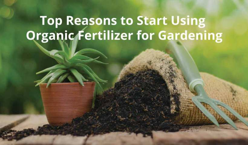 organic fertilizers manufacturers