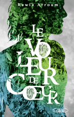 http://www.michel-lafon.fr/livre/1713-Le_voleur_de_coeur.html