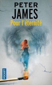 https://www.pocket.fr/tous-nos-livres/thriller-policier-polar/pour_leternite-9782266275316/