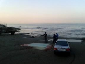 Fisherman on the Caspian shore