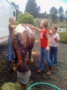 summer horsemanship camp theridinginstructor.net