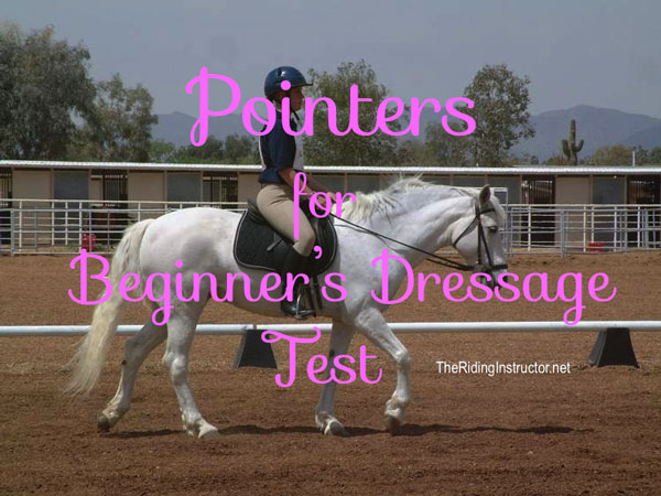 Pointers for a Successful Beginner's Dressage Test
