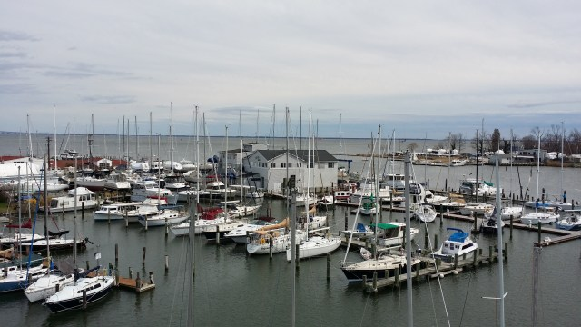 Eastport Yacht Yard from Aloft