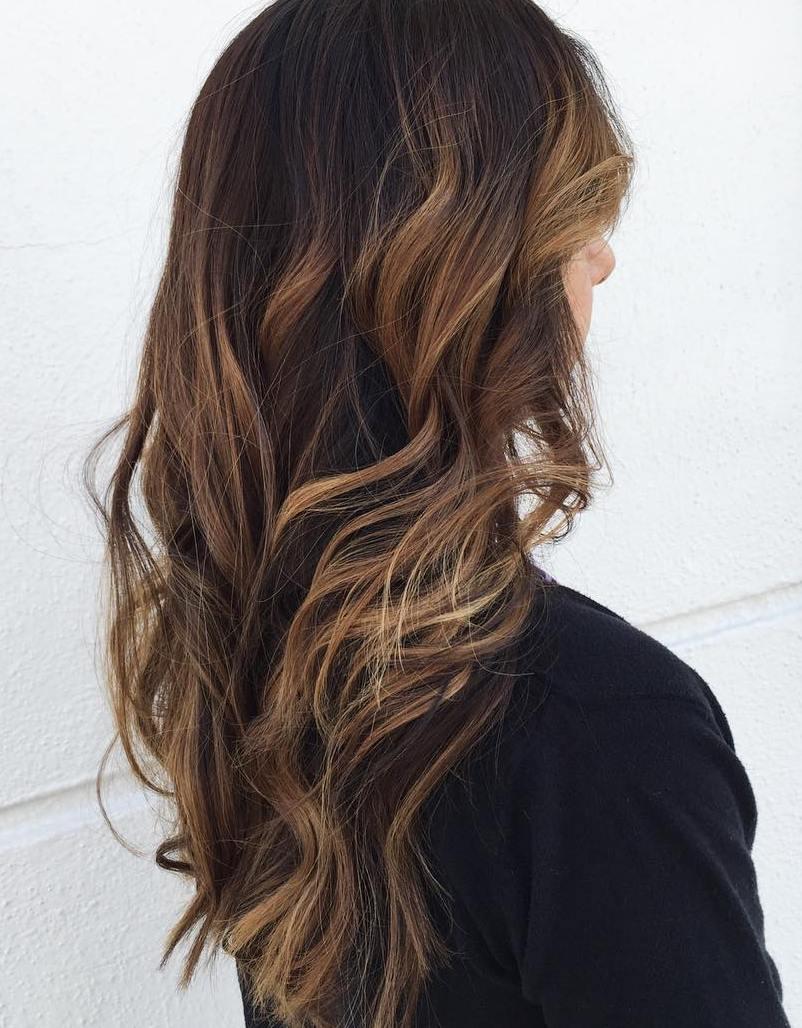 Dark brown hair to light