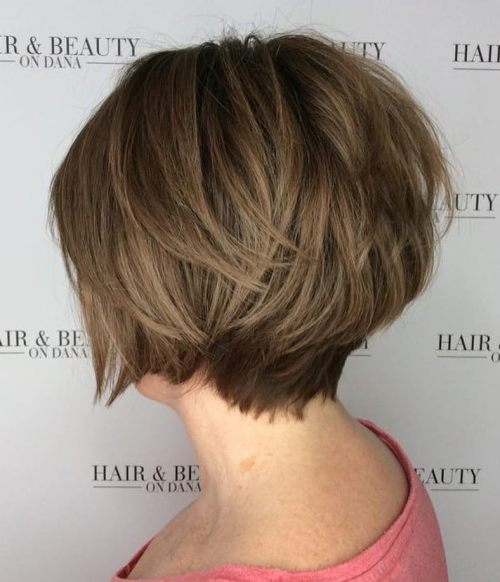 Stacked Brown Pixie Bob