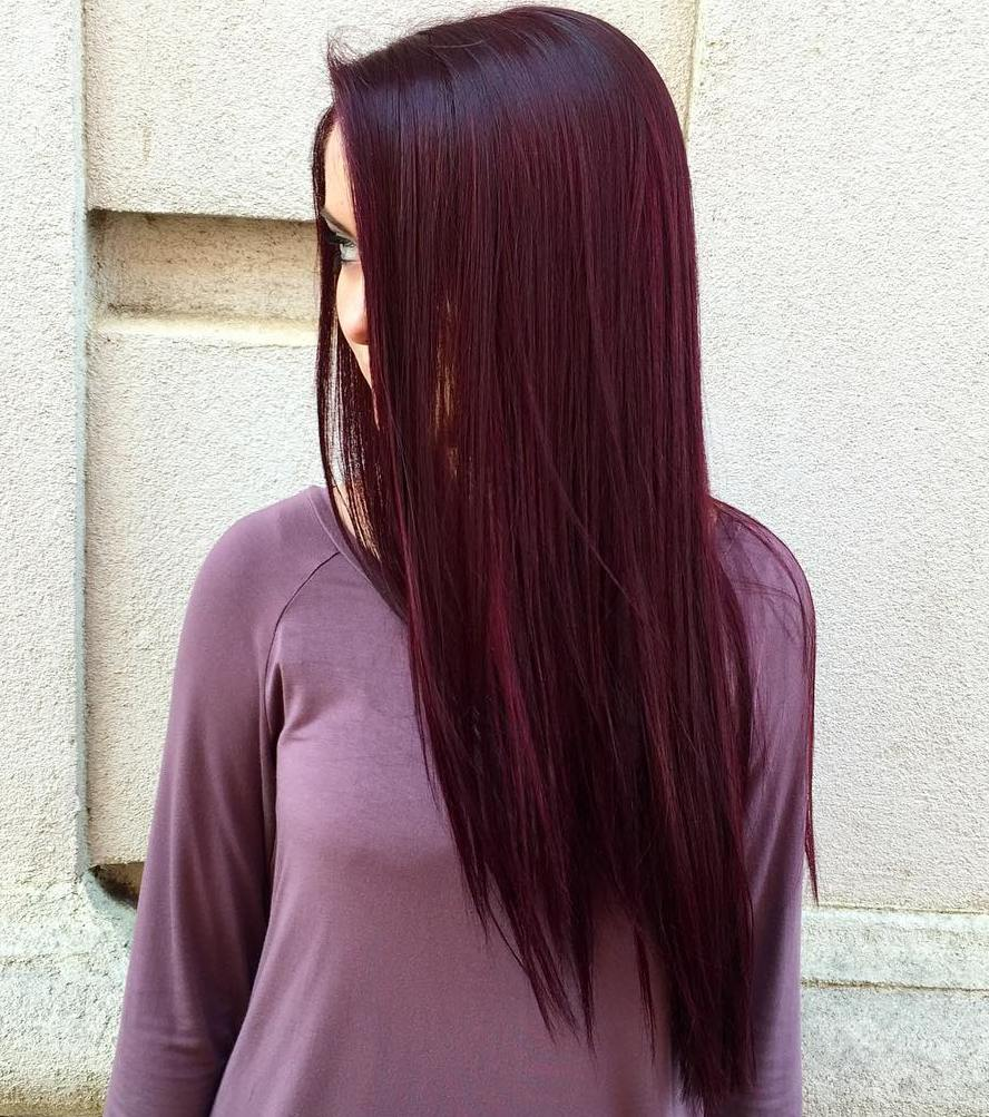 Dark Red Purple Hair Is So Famous But Why Dark Red Purple Hair