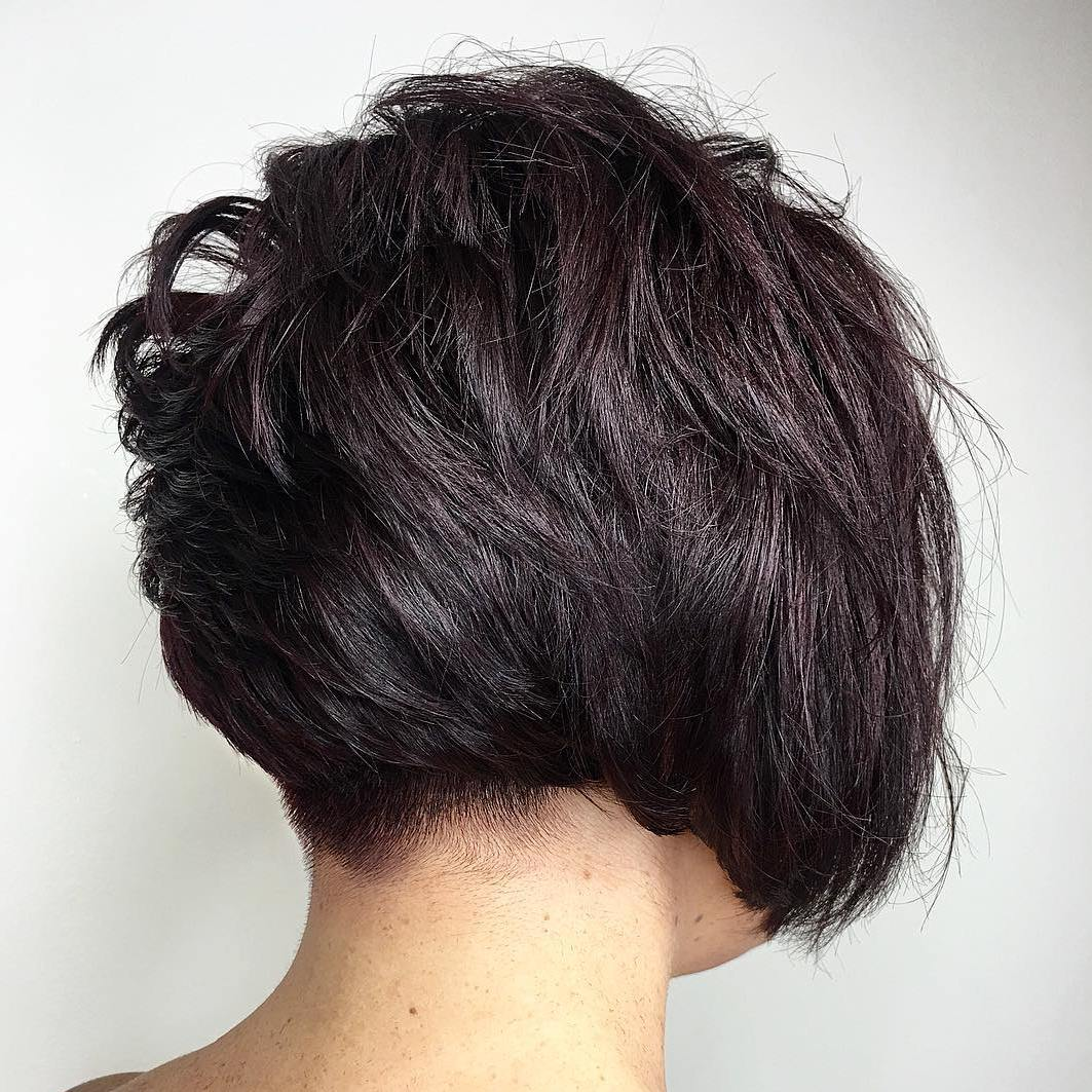 Layered Brown Pixie Bob