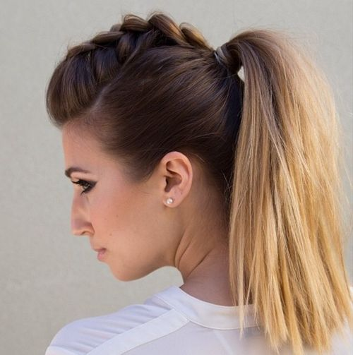 Enjoyable Braided Ponytail Hairstyles 40 Cute Ponytails With Braids Short Hairstyles Gunalazisus