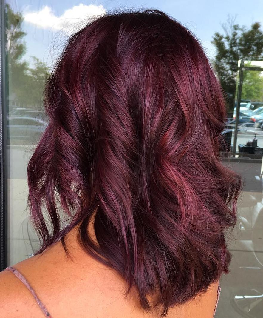 Dark Brown Hair With Purple Undertones - 156.5KB