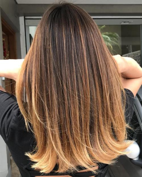 20 New Brown To Blonde Balayage Ideas Not Seen Before