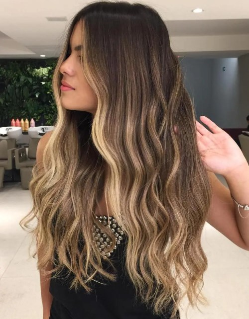 Long Brown Hair with Blonde Face-Framing Highlights