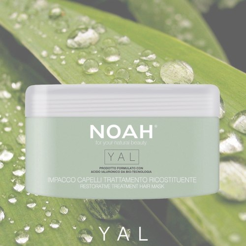Noah Restorative Treatment Hair Mask