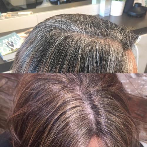 Brown Haircolor For Gray Coverage