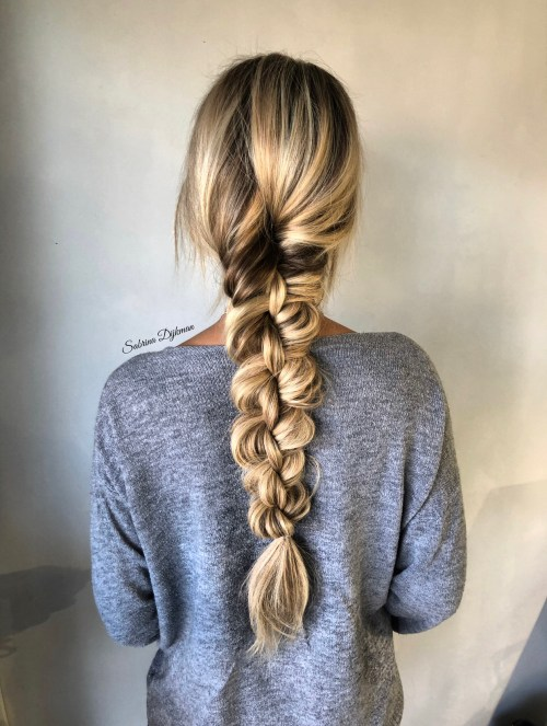 Messy Hairstyle with Two Fishtail Braids