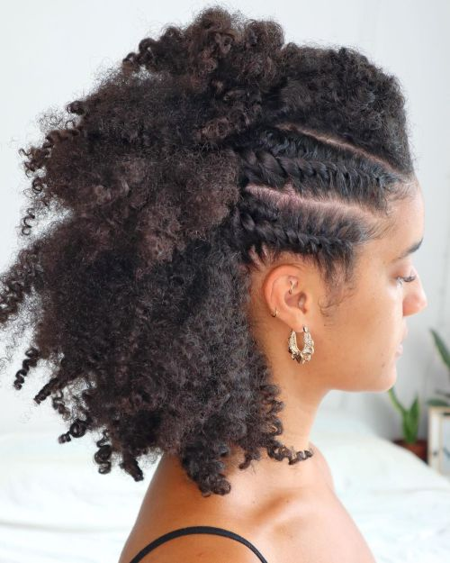 Natural Hairstyle with Flat Twists and a Mohawk