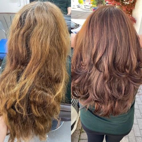 Damaged Porous Hair vs Healthy Hair