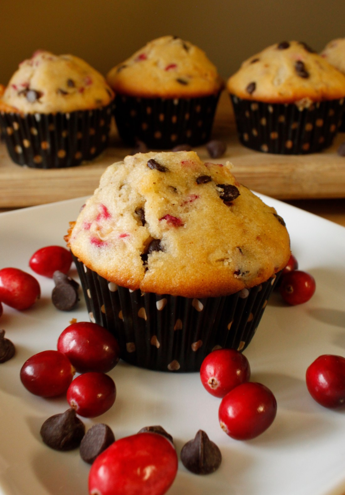Easy To Bake Cranberry Muffins