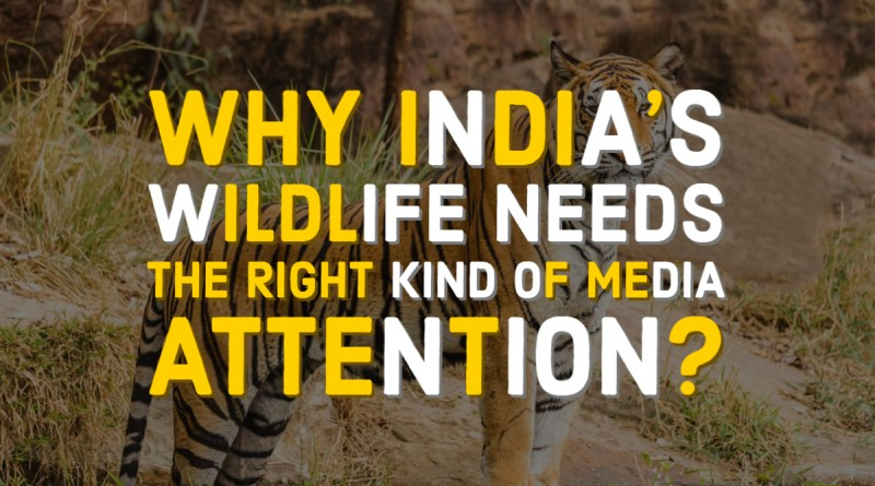 India's wildlife needs right media attention