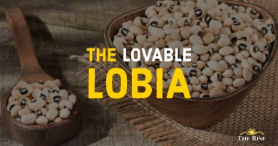 The Lovable Lobia