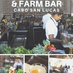 Photos of the Farm Bar at Flora Farms in Cabo San Lucas