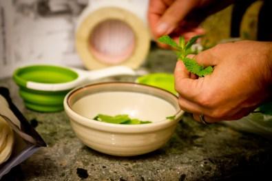 DIY Creme de Menthe, Part 2: Ripping the Mint Leaves