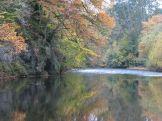 The Irfon in Autumnal splendour