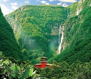 bacaina-parque-nacional-Aparados-da-Serra