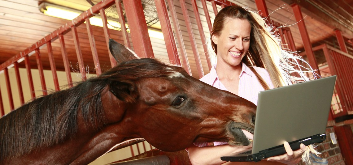 ThermaVet Flir One Pro Camera and ThermaFY software for equine