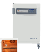 Thermo Heracell CO2 Incubator 50144908