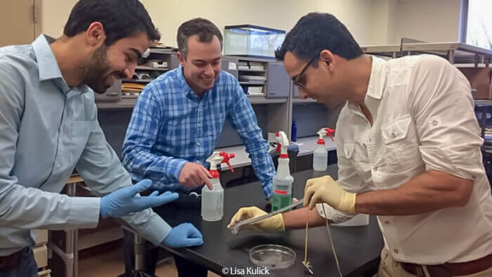 Navid Kazem, Dr Jonathan Malen, Carmel Majidi demonstrate the elasticity of a strip of 'thubber,' a thermally conductive rubber material