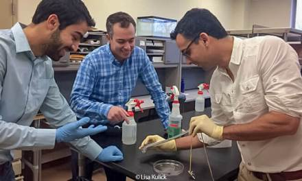 Researchers at Carnegie Mellon create 'Thubber', a material that may revolutionize how we use electronics