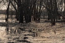 FoxRiver-PrincetonWI.