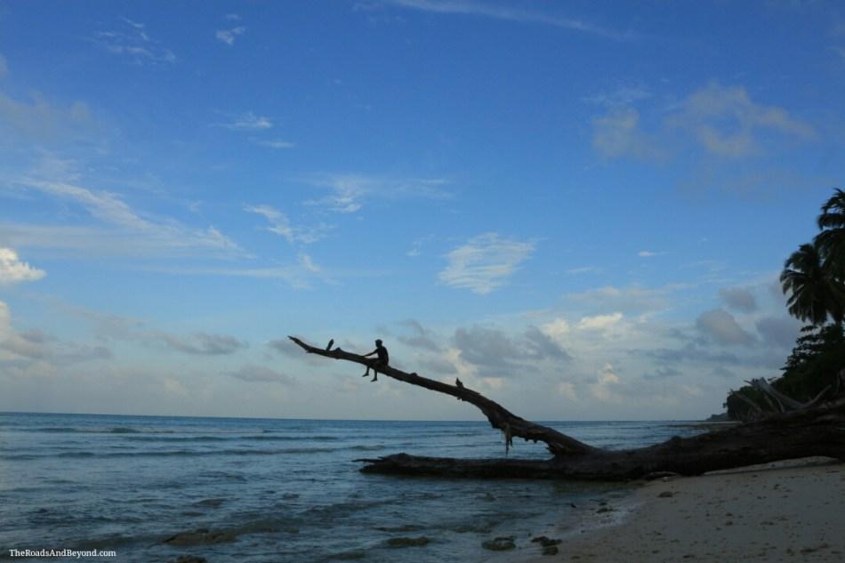 kalapathar-beach image