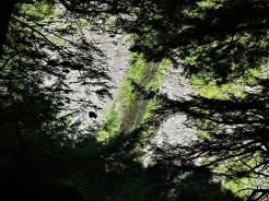whetstone_shale_waterfall